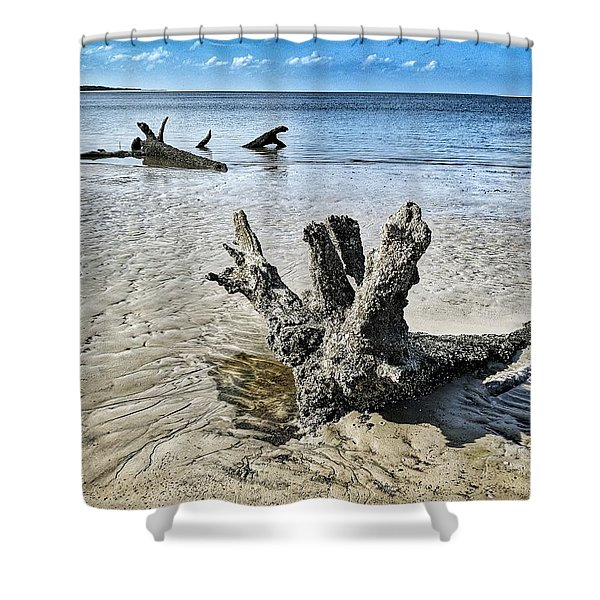 Sculpted By The Sea Shower Curtain