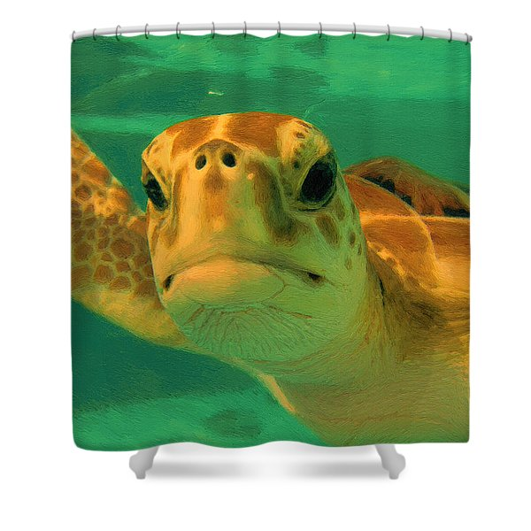 Sea Turtle Off The Mexican Coast - Dwp2086549 Shower Curtain