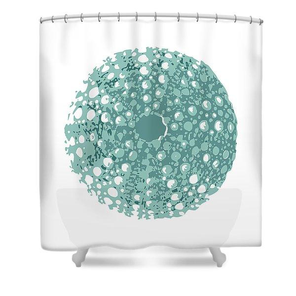 Sea Urchin Kina Shower Curtain