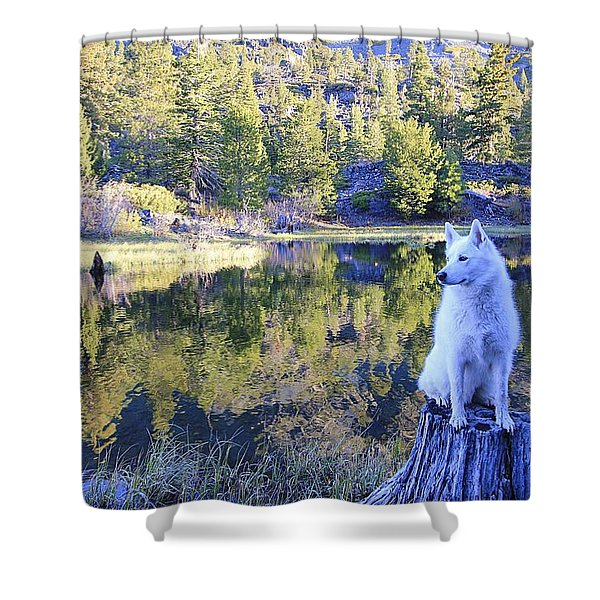 Shower Curtain featuring the photograph Sekani Throne  by Sean Sarsfield