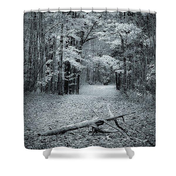 Selenium Trail  Shower Curtain