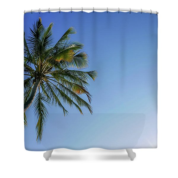 Shades Of Blue And A Palm Tree Shower Curtain