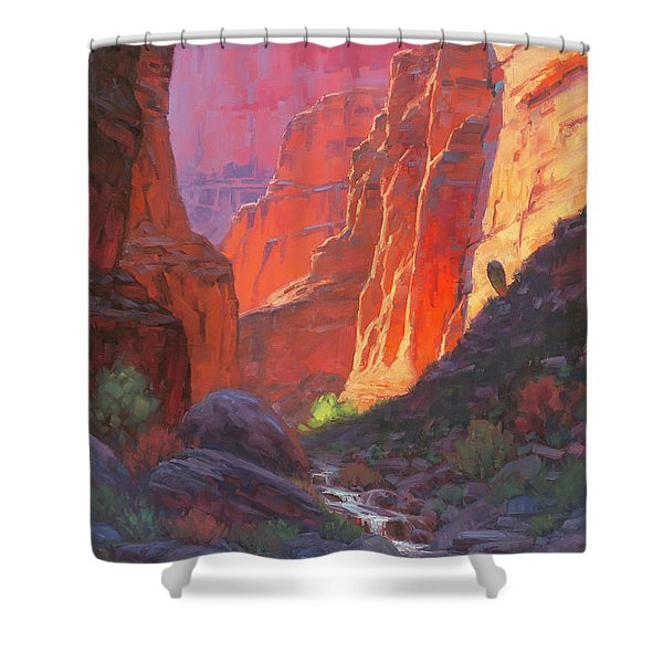 Shadow Barrel  Shower Curtain