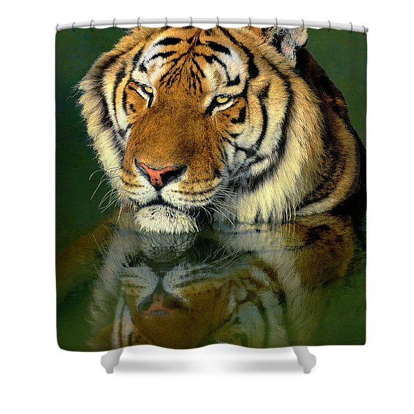 Siberian Tiger Reflection Wildlife Rescue Shower Curtain