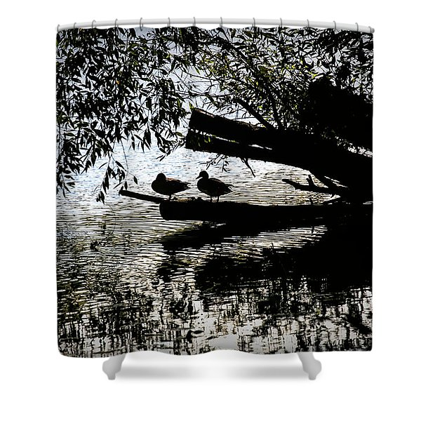 Silhouette Ducks #h9 Shower Curtain