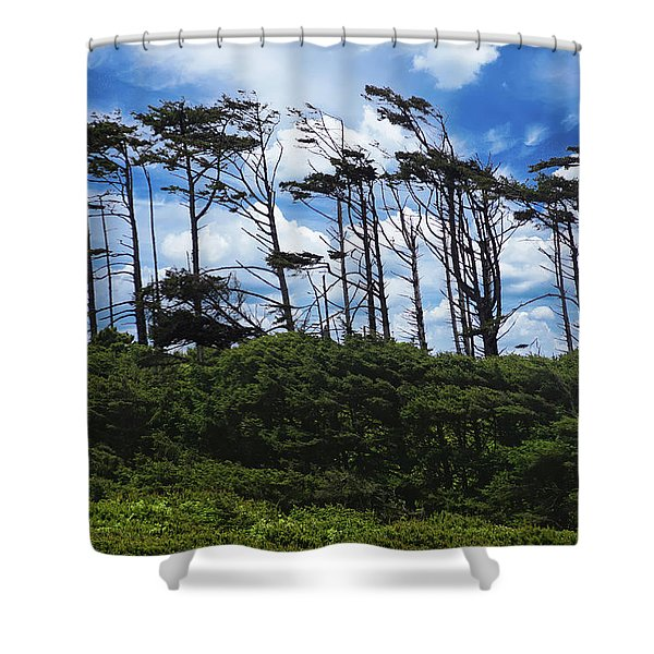Silhouettes Of Wind Sculpted Krumholz Trees  Shower Curtain