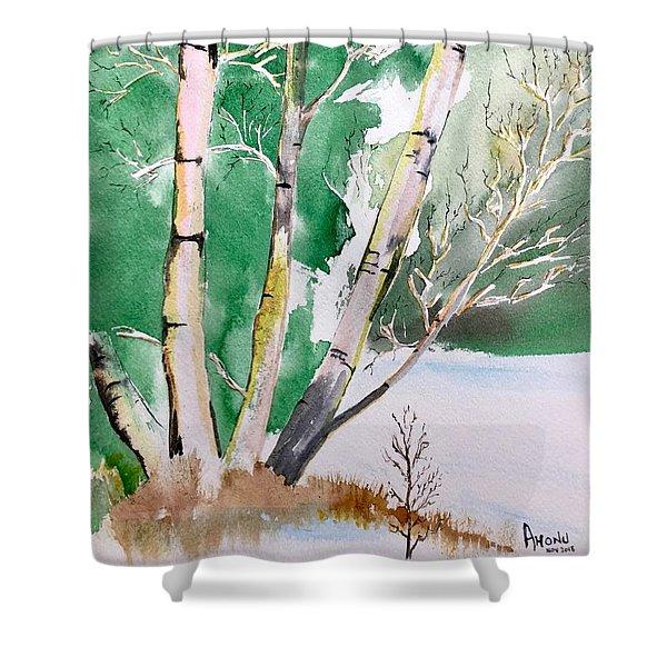 Silver Birch In Snow Shower Curtain