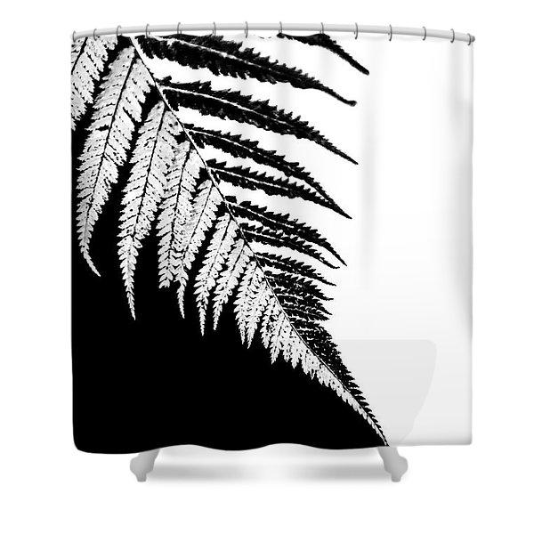 Silver Fern Shower Curtain