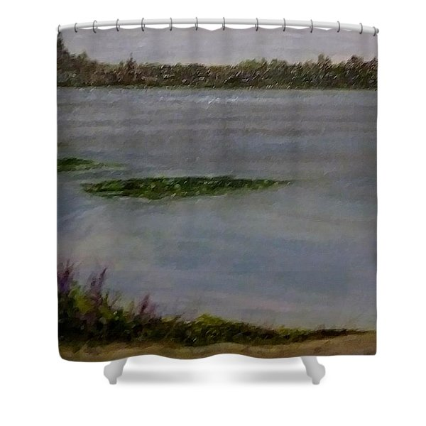 Silver Lake During The Wildfires Shower Curtain