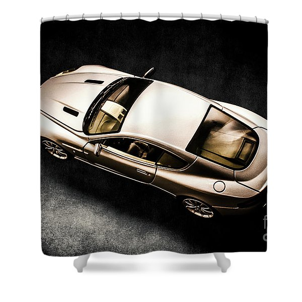 Silver Styling Shower Curtain