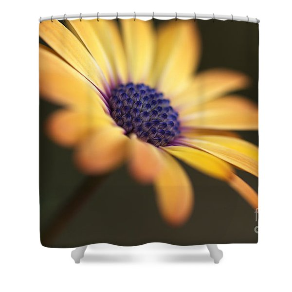 Simply Beautiful In Yellow To Orange  Shower Curtain
