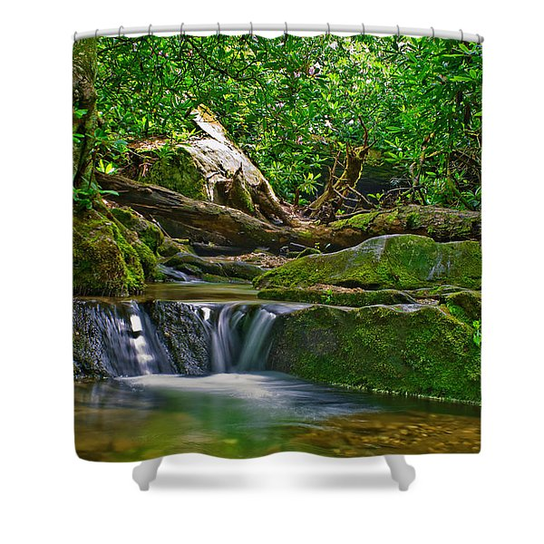 Shower Curtain featuring the photograph Sims Creek Waterfall by Meta Gatschenberger