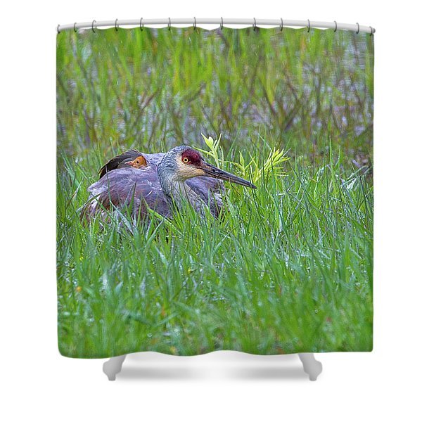 Single For Now  Shower Curtain