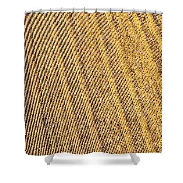 Sixty Million Kernels Shower Curtain