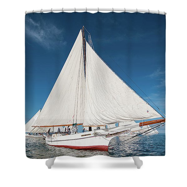 Skipjack Rosie Parks Shower Curtain