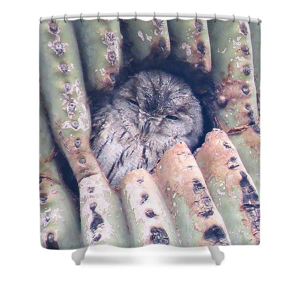 Sleepy Eye Shower Curtain