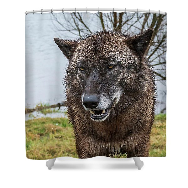 Smiling Shower Curtain