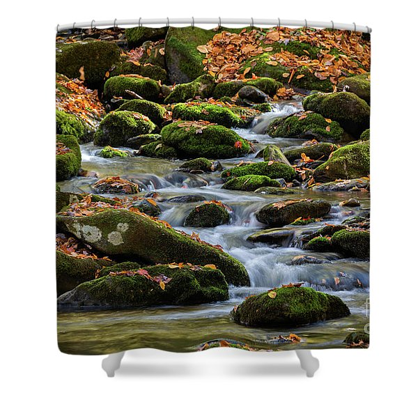 Smokey Mountain Cascades Shower Curtain