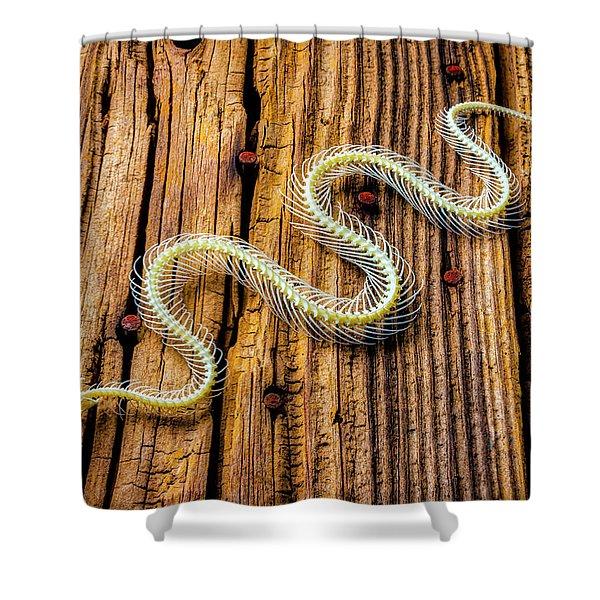 Snake Skeleton On Wooden Boards Shower Curtain