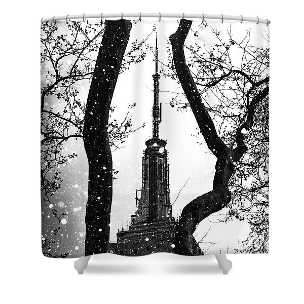 Snow Collection Set 07 Shower Curtain