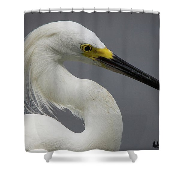 Snow Egret Portrait Shower Curtain