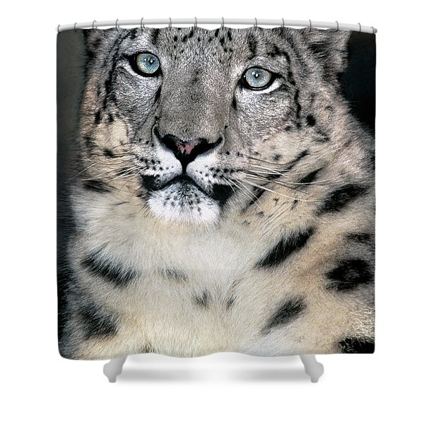 Snow Leopard Portrait Endangered Species Wildlife Rescue Shower Curtain