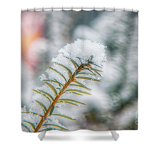 Snow Needle Shower Curtain
