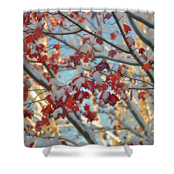Snow On Maple Leaves Shower Curtain