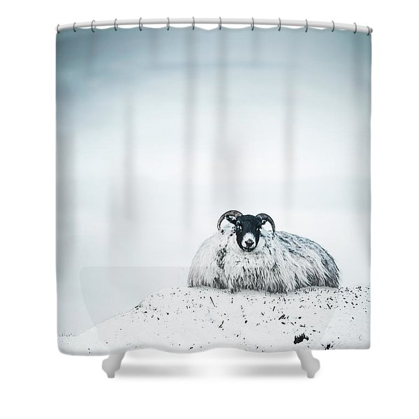 Snow Sheep Shower Curtain