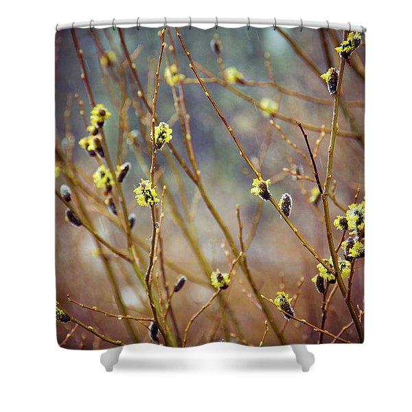 Snowfall On Budding Willows Shower Curtain