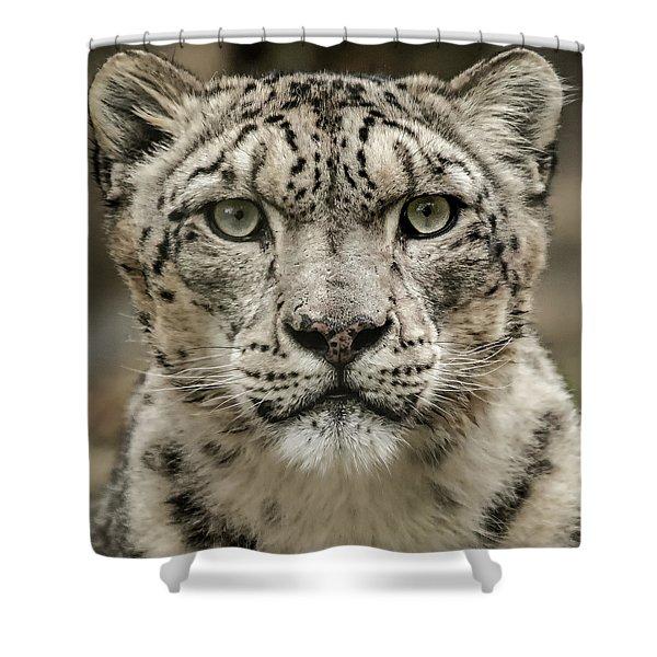 Snowleopardfacial Shower Curtain