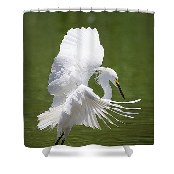 Snowy Dance Shower Curtain