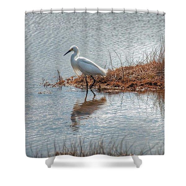 Snowy Egret Hunting A Salt Marsh Shower Curtain
