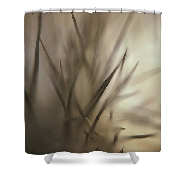 Soft And Spiky Shower Curtain