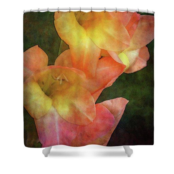 Soft Blush 2975 Idp_2 Shower Curtain