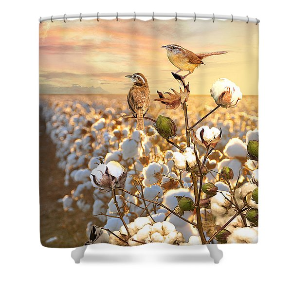 Song Of The Wren Shower Curtain