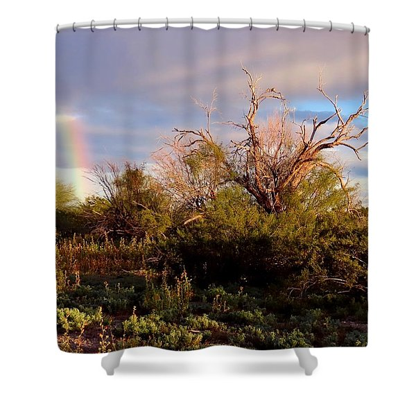 Sonoran Desert Spring Rainbow Shower Curtain