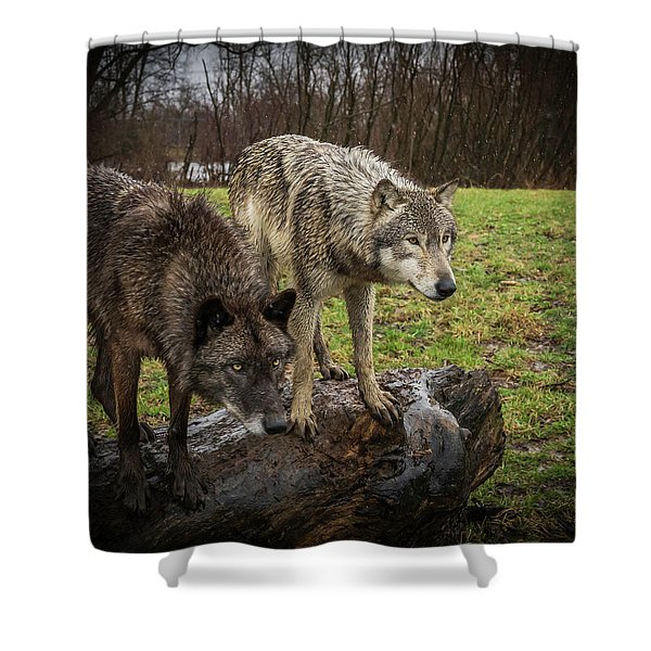 Sort Of Twins Shower Curtain