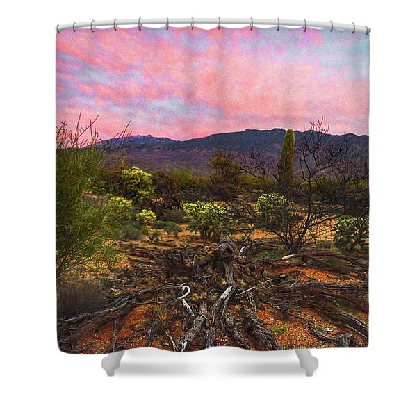 Southwest Day's End Shower Curtain