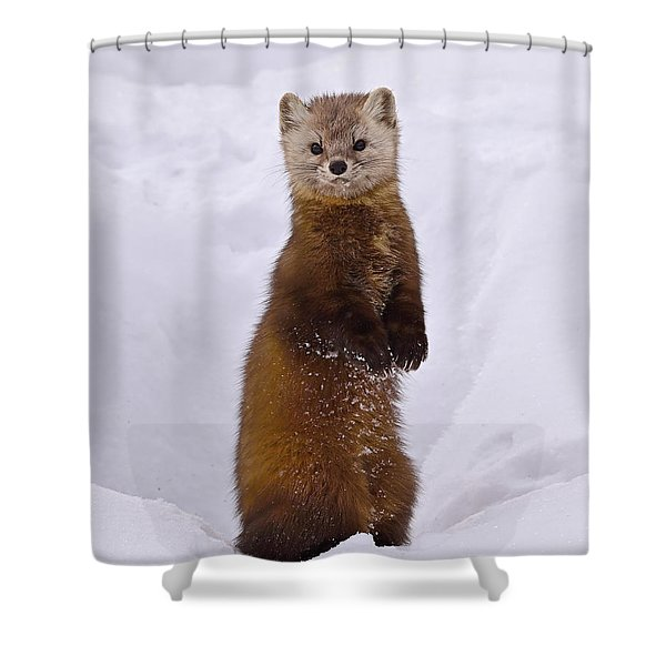 Space Invader Shower Curtain