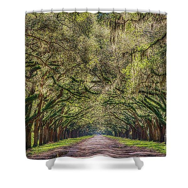 Spanish Moss Tree Tunnel Shower Curtain