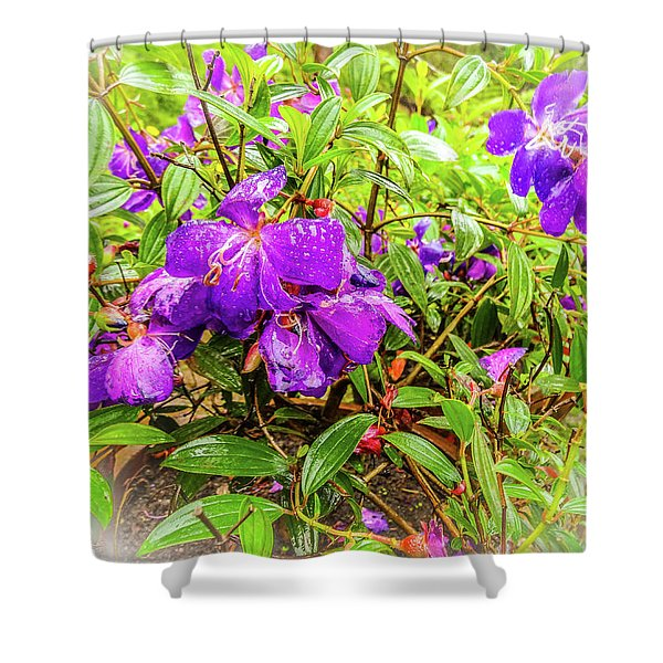 Spring Blossoms2 Shower Curtain