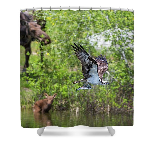 Spring Deliveries  Shower Curtain