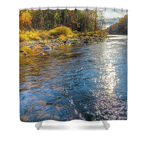 Spring Hole Shower Curtain