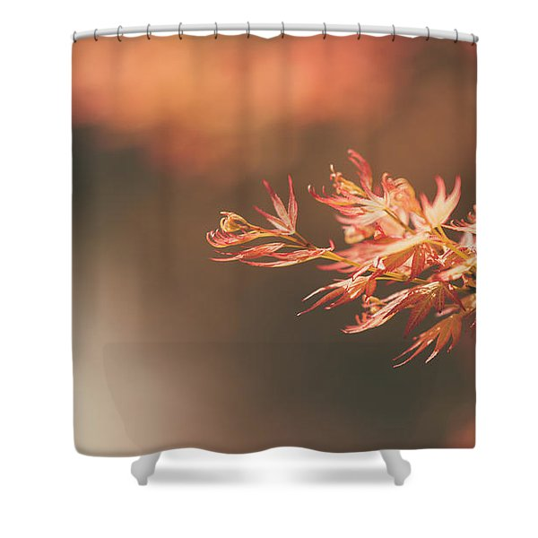 Spring Or Fall Shower Curtain