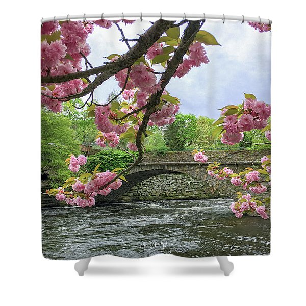 Spring Time In Windham  Shower Curtain
