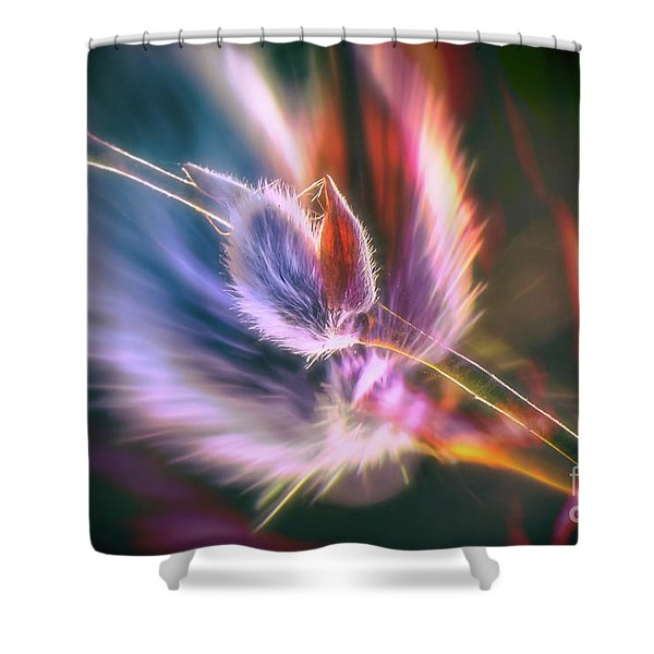 Spring Willow 3 Shower Curtain