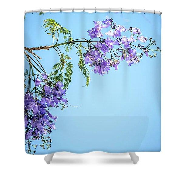 Springtime Beauty Shower Curtain