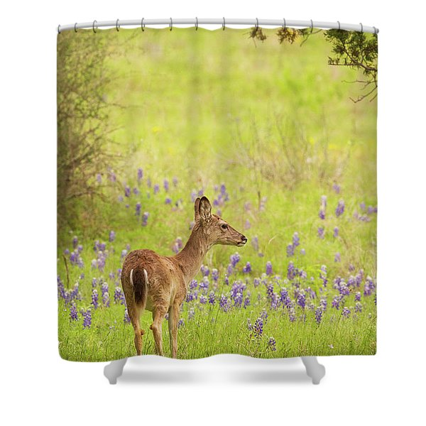 Springtime Whitetail Shower Curtain