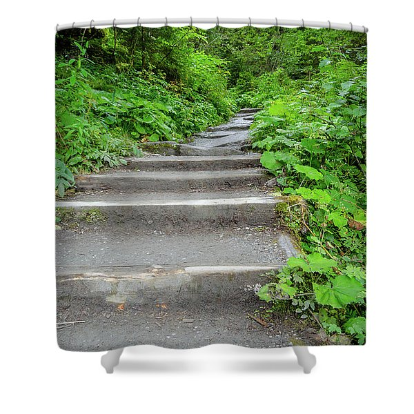 Stairs To The Woods Shower Curtain